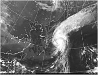 Typhoon15