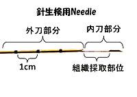 Needleps