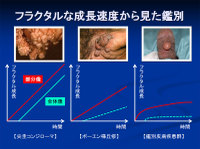 Poster20091111mochida37