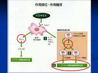 Poster20091111mochida39
