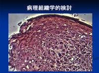 Poster20091111mochida59