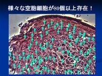 Poster20091111mochida60