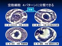 Poster20091111mochida61