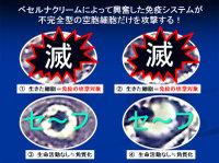 Poster20091111mochida72