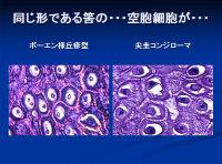 Poster20091111mochida79
