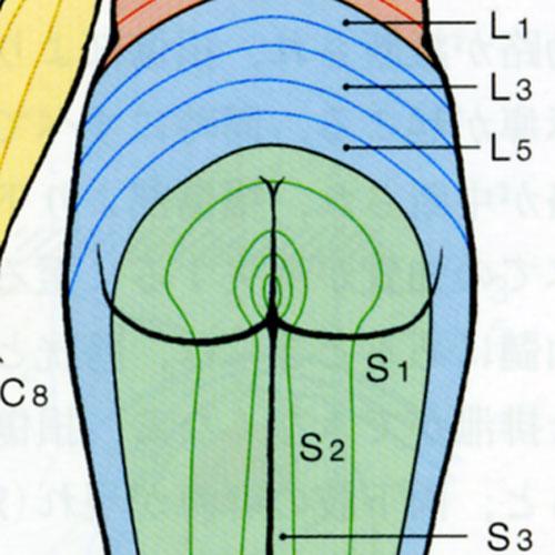 心と体: 慢性膀胱炎・間質性膀胱炎・膀胱頚部硬化症