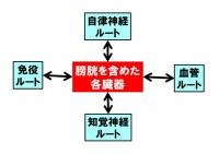 Kaiyodaityo2_20200831091201