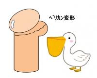 Hokei1